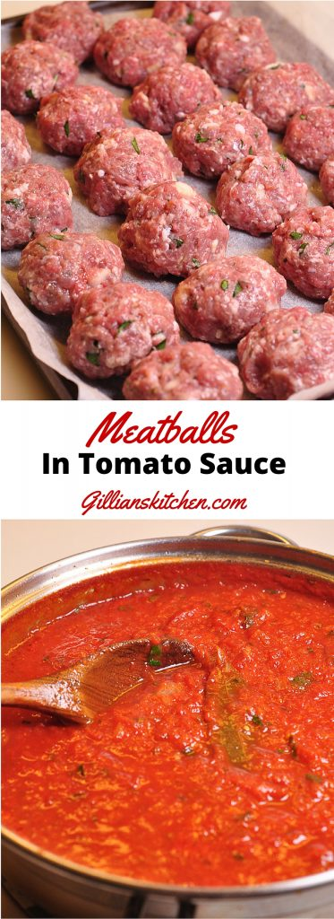 Meatballs in tomato sauce Long Pin